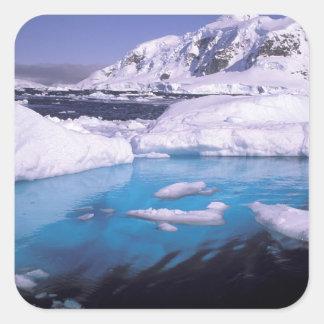La Antártida. Expedición a través de los icescapes Calcomania Cuadradas