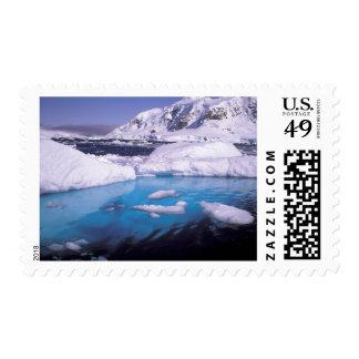 La Antártida. Expedición a través de los icescapes Sello