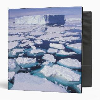 La Antártida flujo del hielo