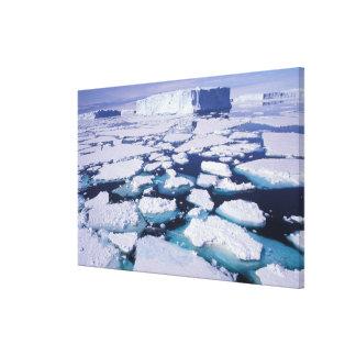 La Antártida flujo del hielo Impresión De Lienzo