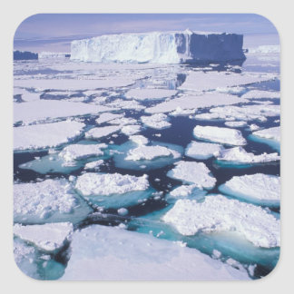 La Antártida flujo del hielo Etiquetas
