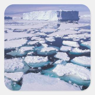 La Antártida, flujo del hielo Pegatina Cuadrada