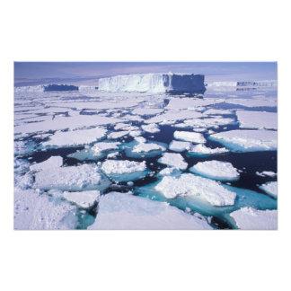 La Antártida flujo del hielo Impresiones Fotograficas