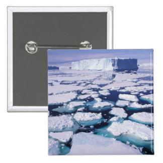 La Antártida flujo del hielo Pin