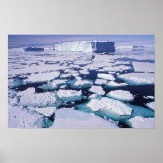 La Antártida, flujo del hielo Póster