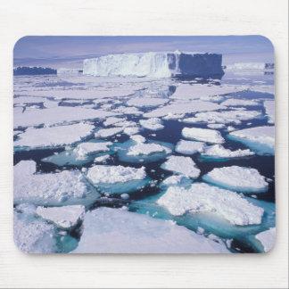 La Antártida flujo del hielo Tapete De Raton