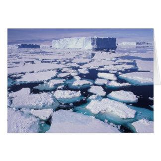 La Antártida flujo del hielo Tarjeton