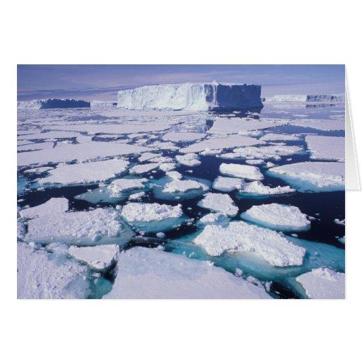La Antártida, flujo del hielo Tarjeton