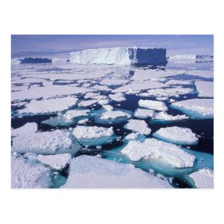 La Antártida, flujo del hielo Tarjetas Postales