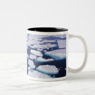 La Antártida, flujo del hielo Taza Dos Tonos
