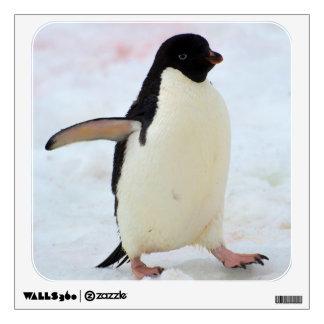 La Antártida. Isla de Petermann. Pingüino de Vinilo Adhesivo
