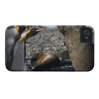 La Antártida, isla del sur de Georgia (Reino iPhone 4 Case-Mate Protectores