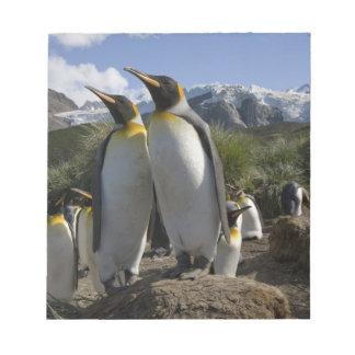 La Antártida, isla del sur de Georgia (Reino Unido Bloc De Notas