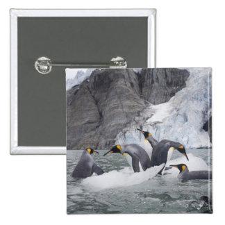 La Antártida, isla del sur de Georgia (Reino Unido Pin Cuadrado
