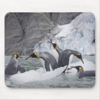 La Antártida, isla del sur de Georgia (Reino Unido Alfombrilla De Ratón