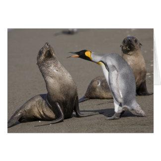 La Antártida, isla del sur de Georgia (Reino Unido Tarjeta De Felicitación