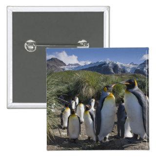 La Antártida, isla del sur Reino Unido de Georgia) Pins