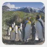 La Antártida, isla del sur Reino Unido de Calcomania Cuadrada Personalizada