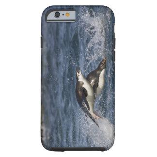 La Antártida, Islas Shetland del sur, Gourdon Funda Para iPhone 6 Tough