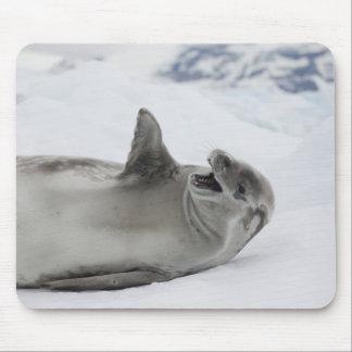 La Antártida, península antártica, antártico 2 Alfombrillas De Ratones