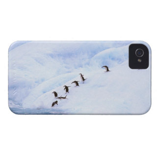 La Antártida, península antártica. Chinstrap iPhone 4 Fundas