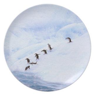 La Antártida península antártica Chinstrap Plato Para Fiesta