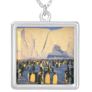 La Antártida, península antártica, mar de Weddell, Grimpolas Personalizadas