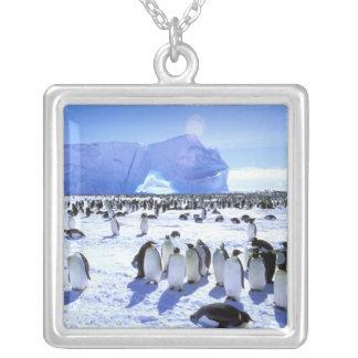 La Antártida, península antártica, mar de Weddell, Joyerías