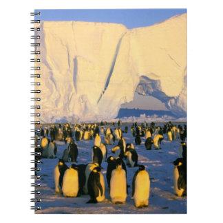 La Antártida, península antártica, mar de Weddell, Note Book