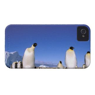 La Antártida, península antártica, mar de Weddell, Case-Mate iPhone 4 Cobertura