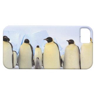 La Antártida, península antártica, mar de Weddell, iPhone 5 Case-Mate Funda