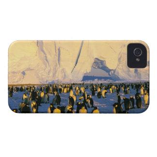 La Antártida, península antártica, mar de Weddell, Case-Mate iPhone 4 Coberturas