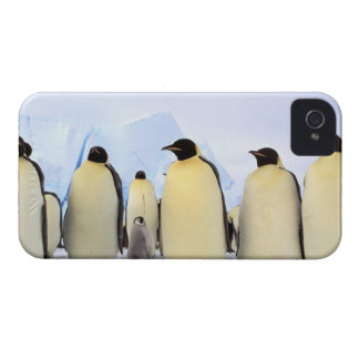 La Antártida, península antártica, mar de Weddell, iPhone 4 Case-Mate Coberturas