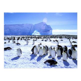 La Antártida, península antártica, mar de Weddell, Postales
