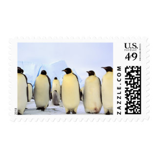 La Antártida, península antártica, mar de Weddell, Sello Postal