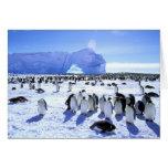La Antártida, península antártica, mar de Weddell, Tarjeta