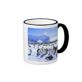 La Antártida, península antártica, mar de Weddell, Taza A Dos Colores