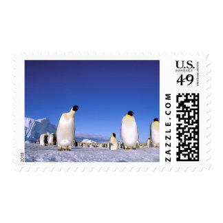 La Antártida, península antártica, mar de Weddell, Timbre Postal