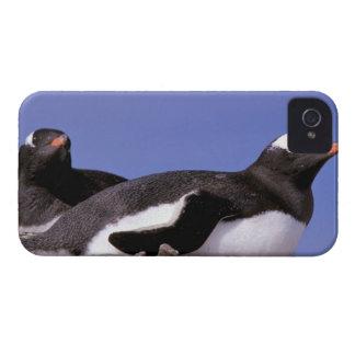 La Antártida, península antártica, Peterman iPhone 4 Case-Mate Protectores