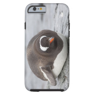 La Antártida, península antártica. Petermann Funda De iPhone 6 Tough
