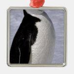La Antártida. Pingüino 2 de Chinstrap Adorno Para Reyes