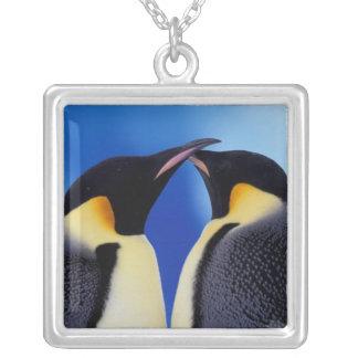 La Antártida, pingüino de emperador (Aptenodytes 2 Pendiente Personalizado