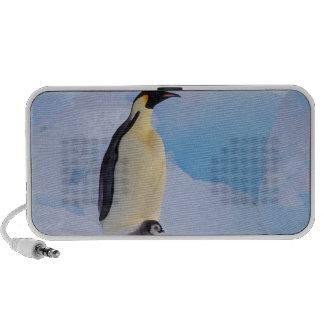 La Antártida, pingüino de emperador (Aptenodytes Mp3 Altavoces