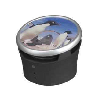 La Antártida, Pygoscelis del pingüino de Adelie Altavoz Con Bluetooth