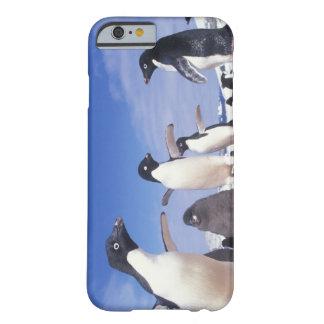 La Antártida, Pygoscelis del pingüino de Adelie Funda De iPhone 6 Barely There