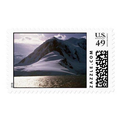 La Antártida Sello