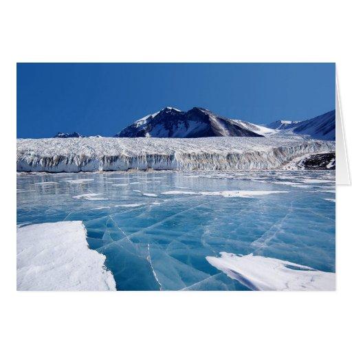 La Antártida Tarjeta De Felicitación