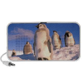 La Antártida, territorio antártico australiano, 6 Portátil Altavoz