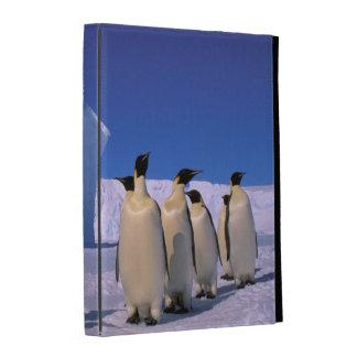 La Antártida, territorio antártico australiano, 7