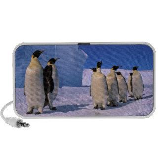 La Antártida, territorio antártico australiano, 7 Laptop Altavoz